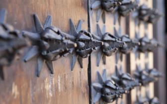 Metal Detailing on a Spanish Wooden Door