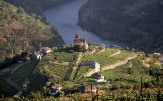 Aerial View of Douro Valley