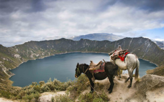 Horses at Quilotoa Crater