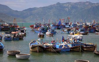Fishing Boats Nha Trang