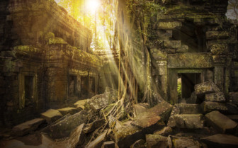 Ta Prohm Shaft of Sunlight