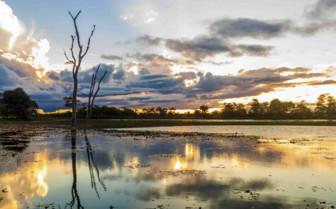 Sunrise over Pantanal