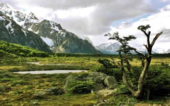Green Landscape below Mountains