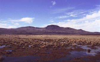 Landscape of Pampas