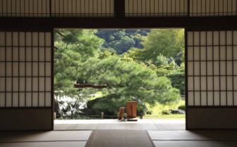 Tatami Japan