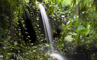 Waterfall in Amazon