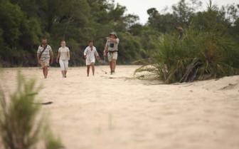 Bush Walking at Ngala Tented Camp
