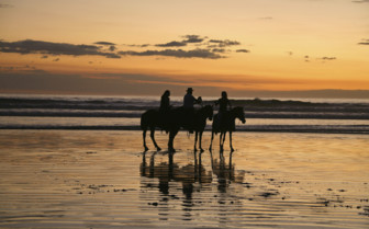 Horse riding on the beach at sunset in Costa Rica