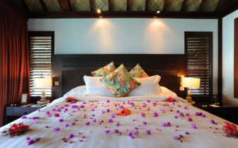 Romantic flower petals on bed