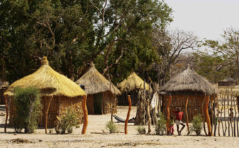 Straw huts in the Namib desert