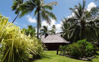 Luxury island gardens
