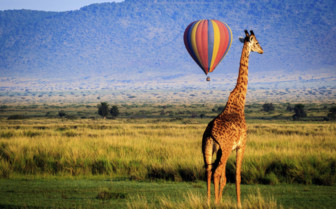 Hot air balloon over the Masai Mara