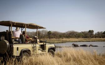 Jeep game drive in Tanzania