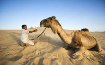 Young Bedouin with camel