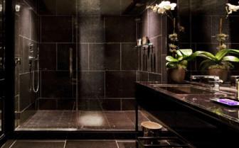 Guest bathroom rain shower