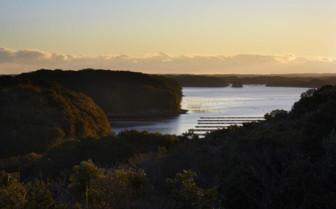 Ago Bay view