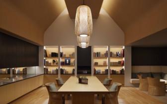 Amanemu library