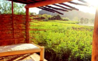 Cabana terrace