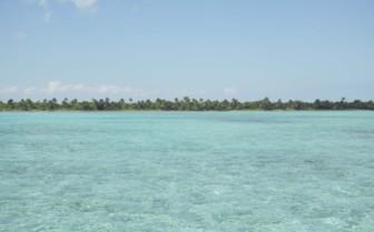 Ambergis Caye Belize