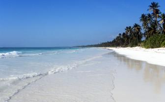 Tanzanian Coast White Beach