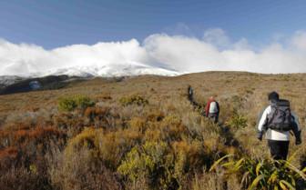 Hiking Through the Tongariro Crossing