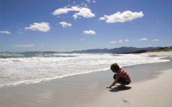 Beach at Grootbos