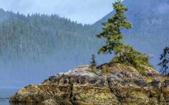 Island in British Columbia