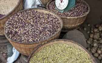 Kigali Market in Rwanda