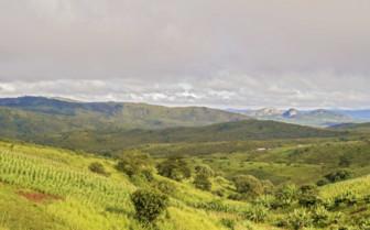 Rolling Green Hills of Malawi