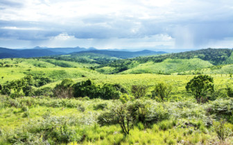Green Rolling Hills in the National Park