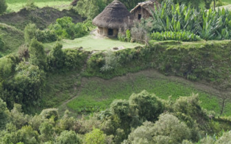 Green Fields of Ethiopia