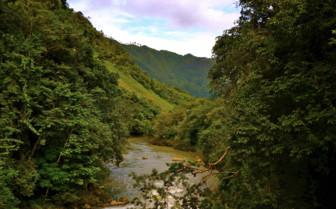 Guatemala Valley