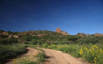 Landscape near Saruni Samburu