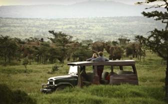 Jeep Safai at the Enasoit