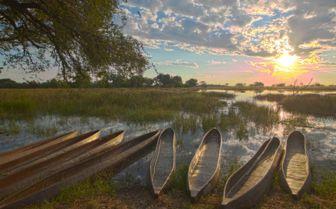 Canoes on the Okavango Delta, Botswana