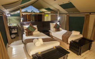 Tented room, Pom Pom Camp