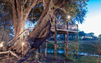 Tree House Terrace at Pom Pom Camp, Botswana
