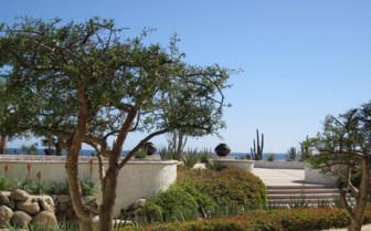 garden view from the junior suite