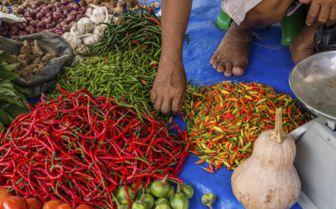 Sumatra market
