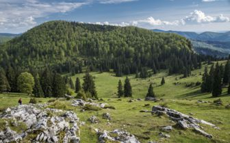 Mountains of Transylvania