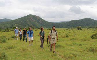 Walking Safari, Settler's Drift