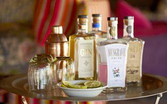 Gin, Jaci's Safari Lodge