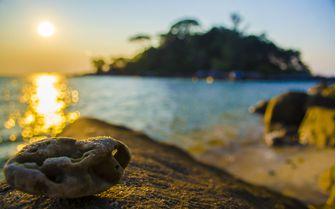 Tioman sunset beach