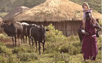 Maasai Guide herding cattle at The Highlands