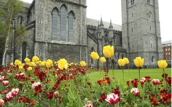 A picture of St Patrick's Cathedral, Dublin