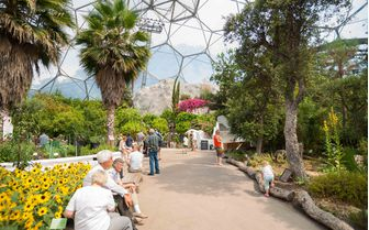An interior view of The Eden Project, Cornwall