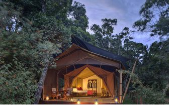 Elephant Pepper Camp Double Tent