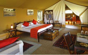 Elephant Pepper Camp Bedroom