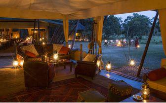 Elephant Pepper Camp Lounge