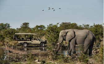 skybeds_elephant_game_drive